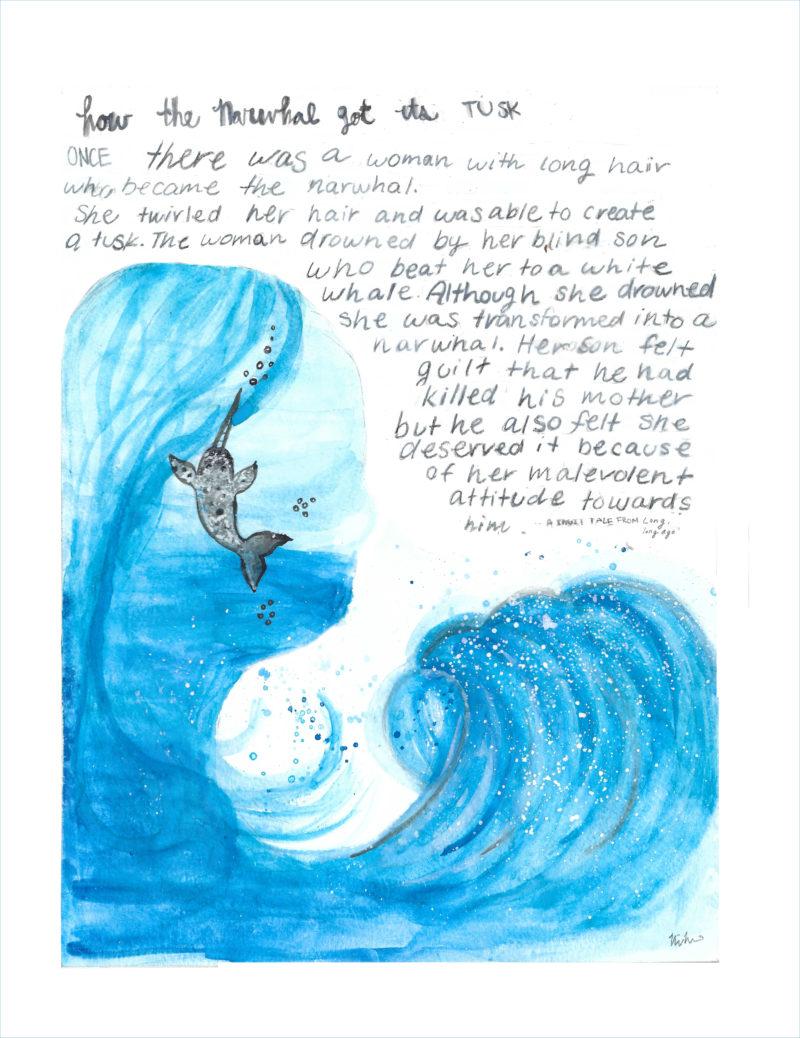 Nina Mazereeuw narwhal drawing