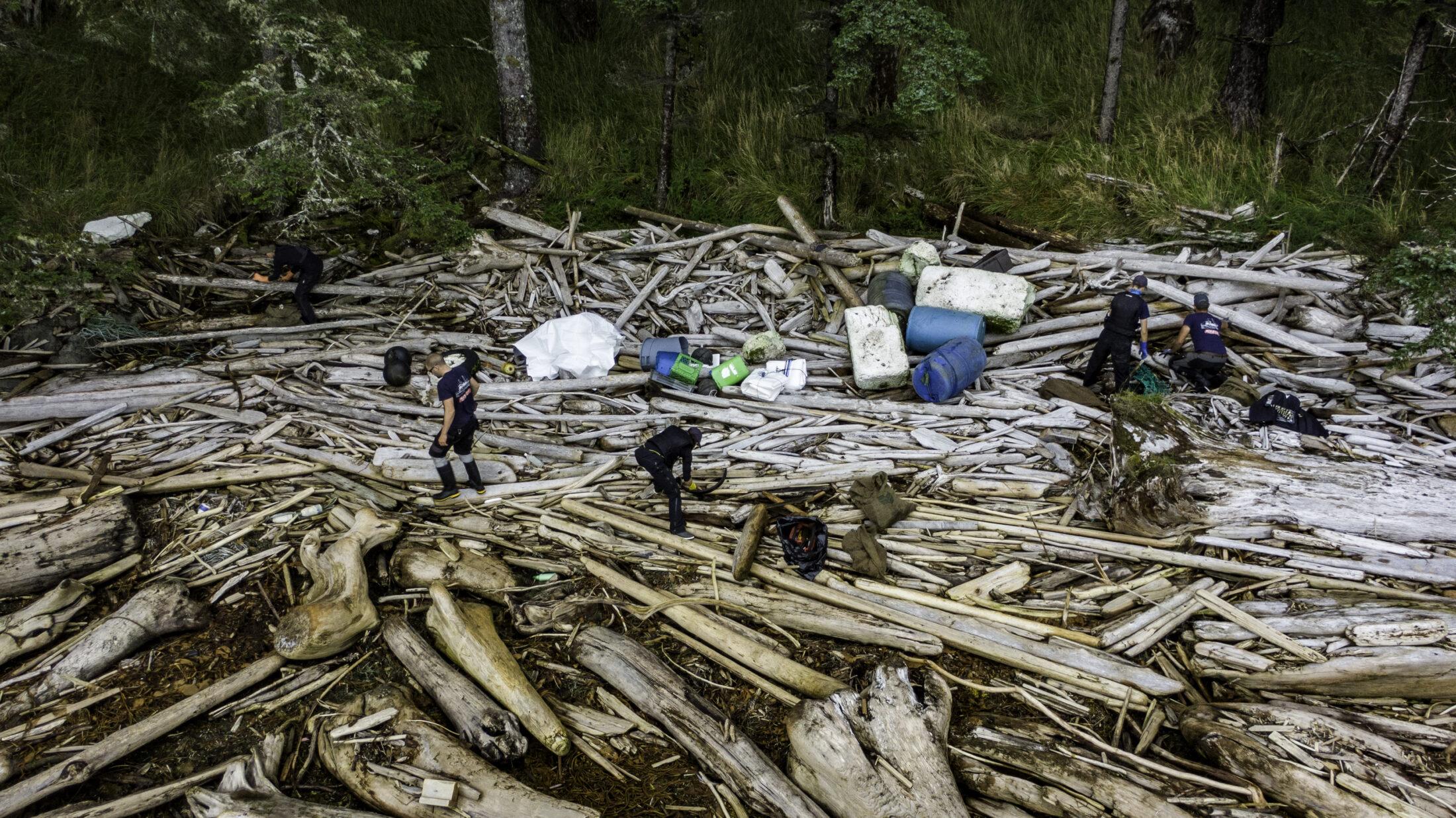 Walking on logs, Clean Coast, Clean Waters Initiative