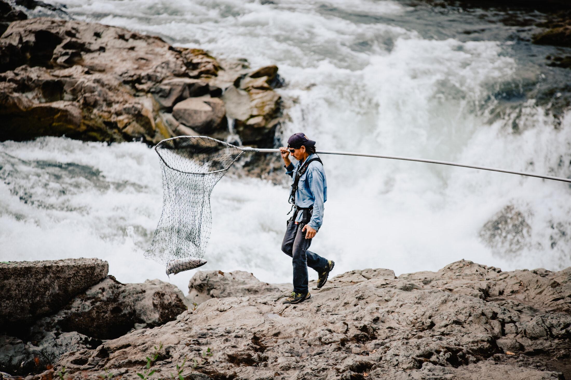 Wet'suwet'en food fisher