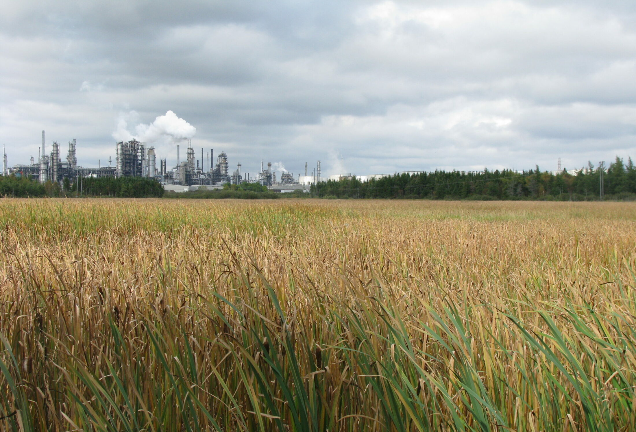 Irving Oil Refinery