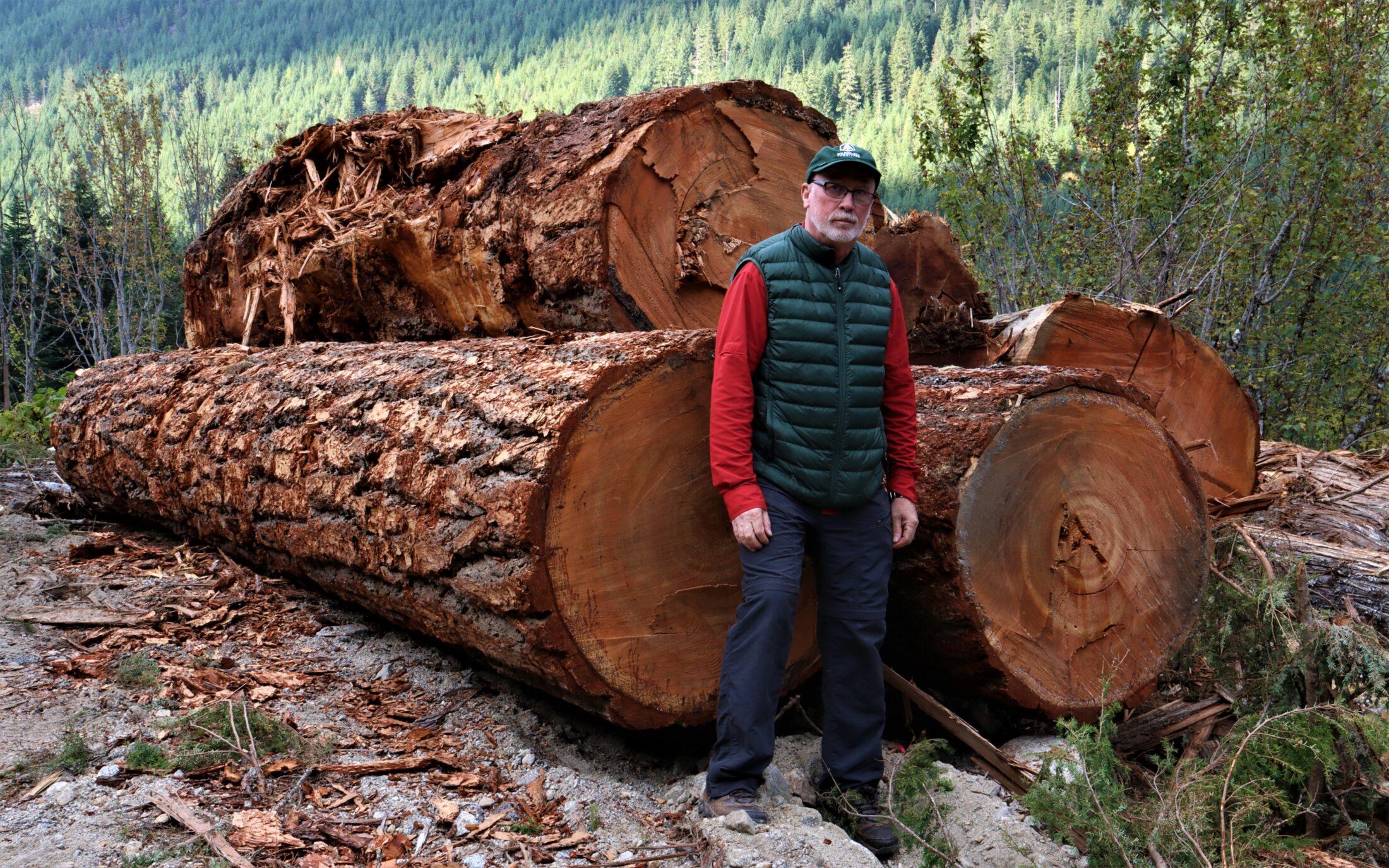 Joe Foy Spuzzum Valley logging