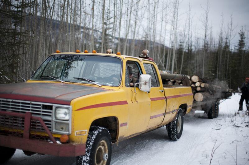 Yukon biomass climate change