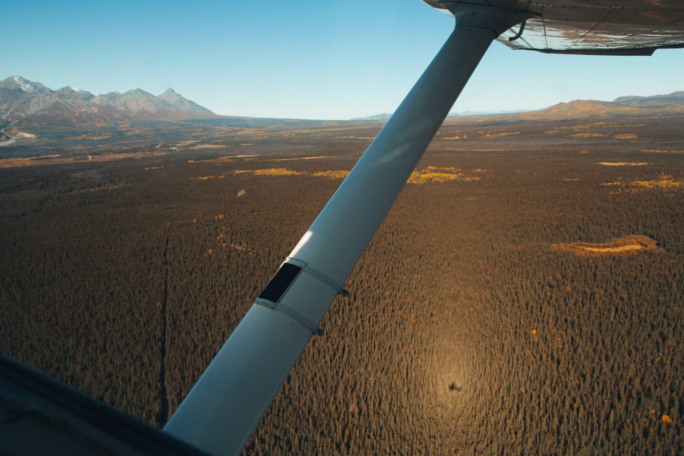 Yukon Biomass Jack Church The Narwhal