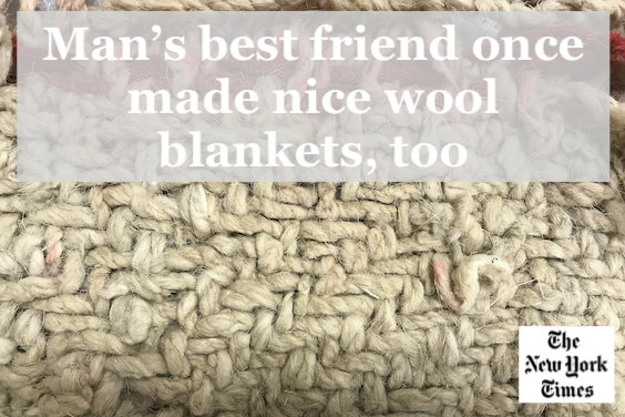 New York Times article wool blankets