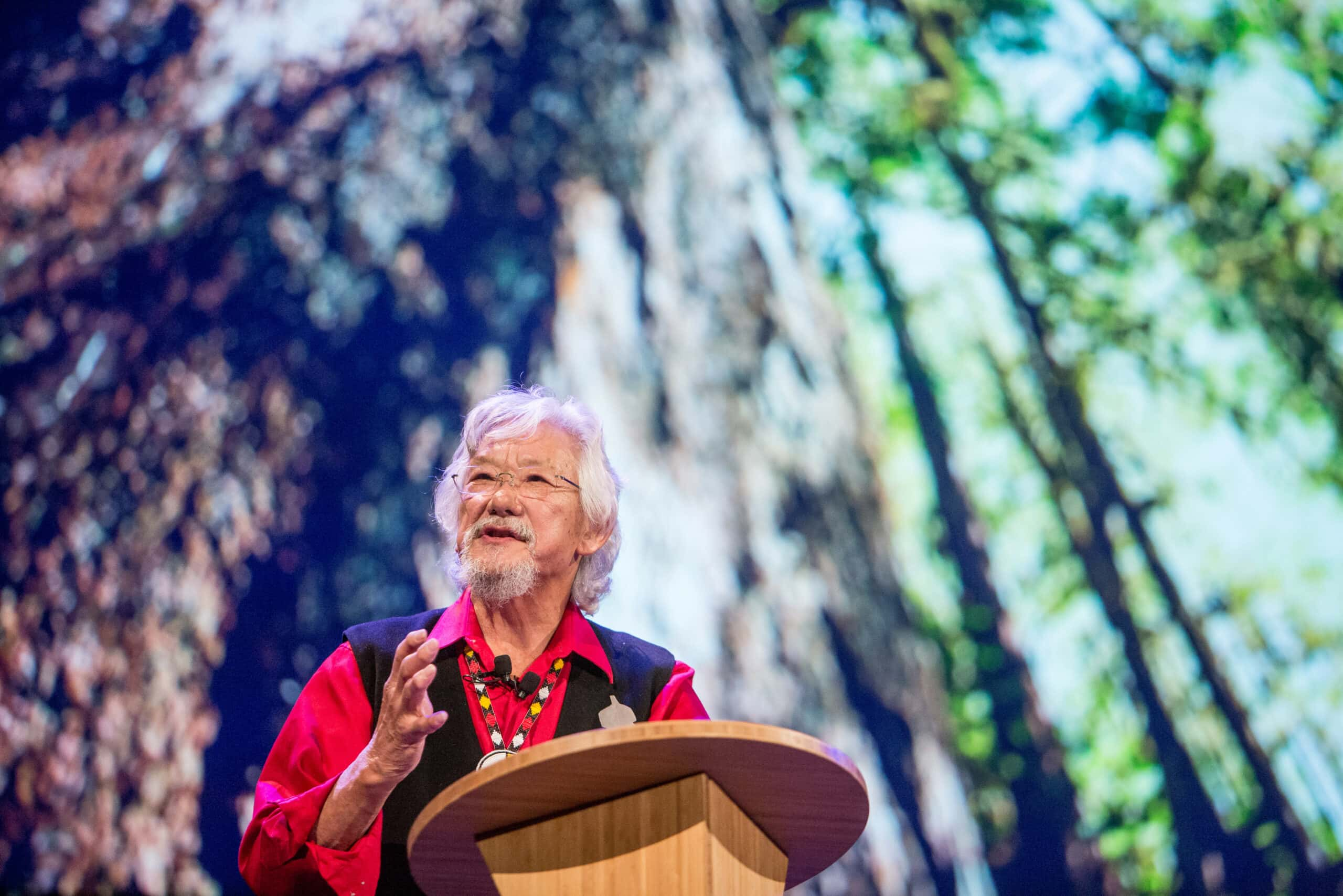 David Suzuki Nature of Things