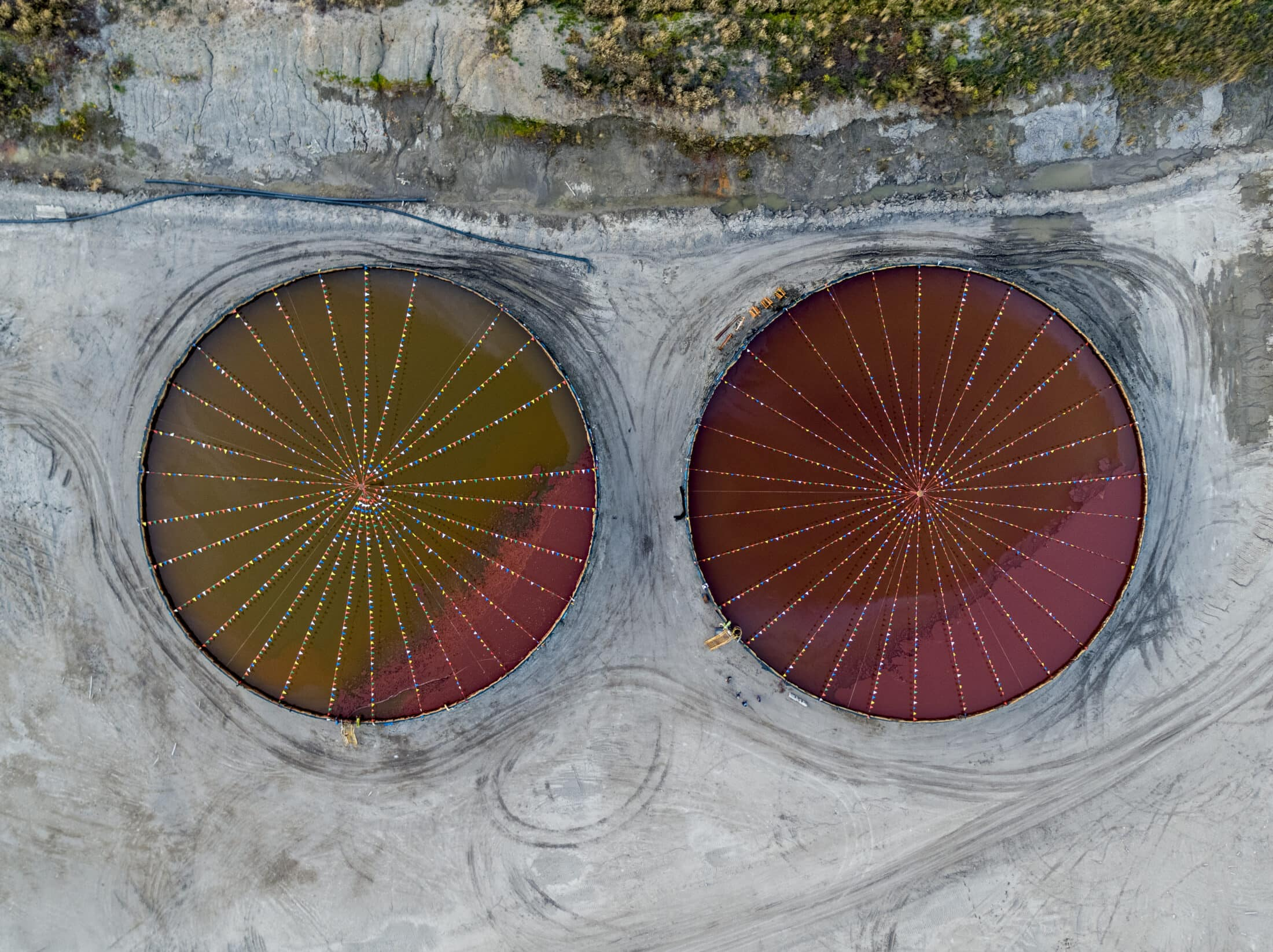 C-rings, Peace River region