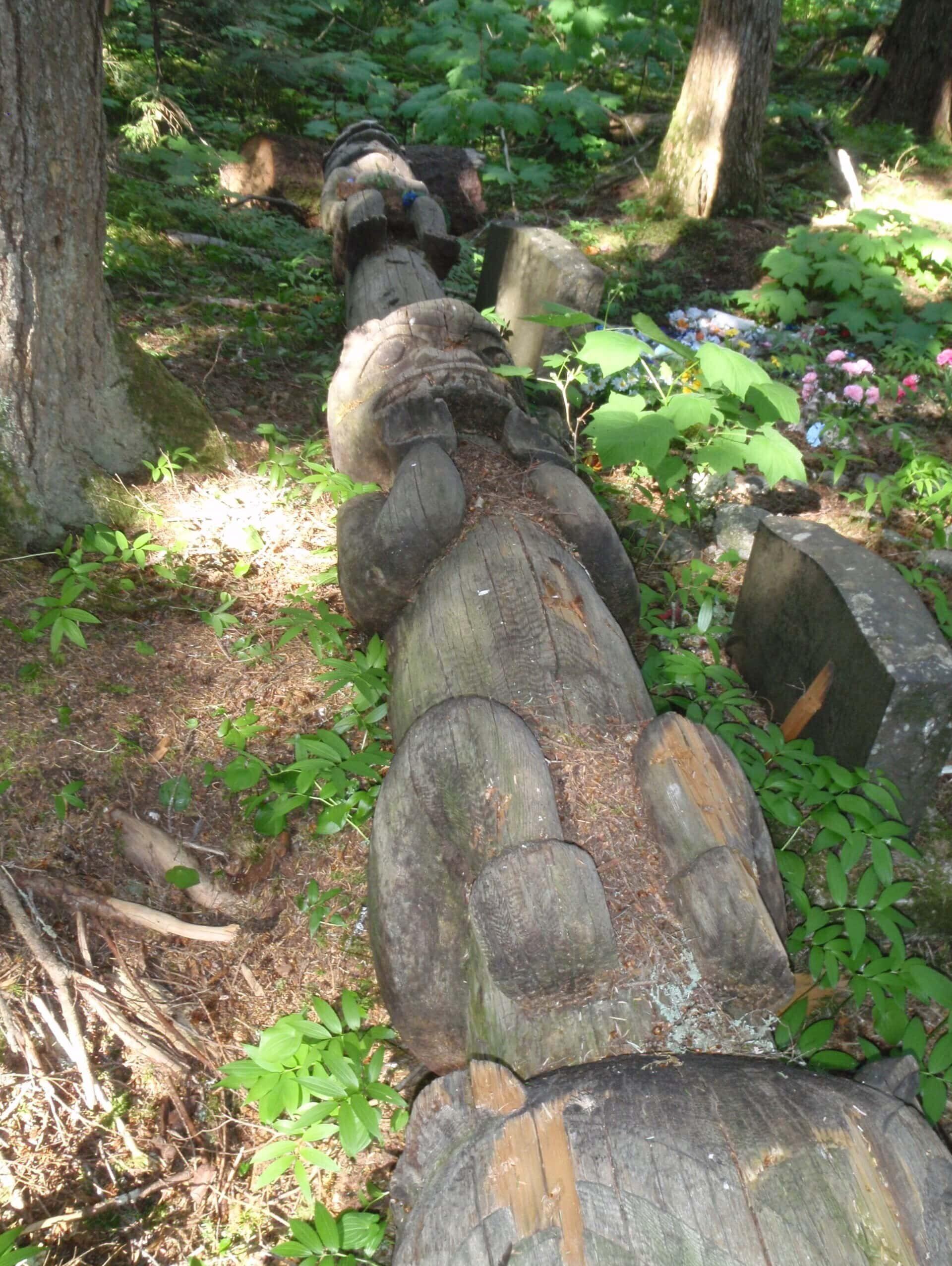 G'psgolox totem pole lying on the ground among trees