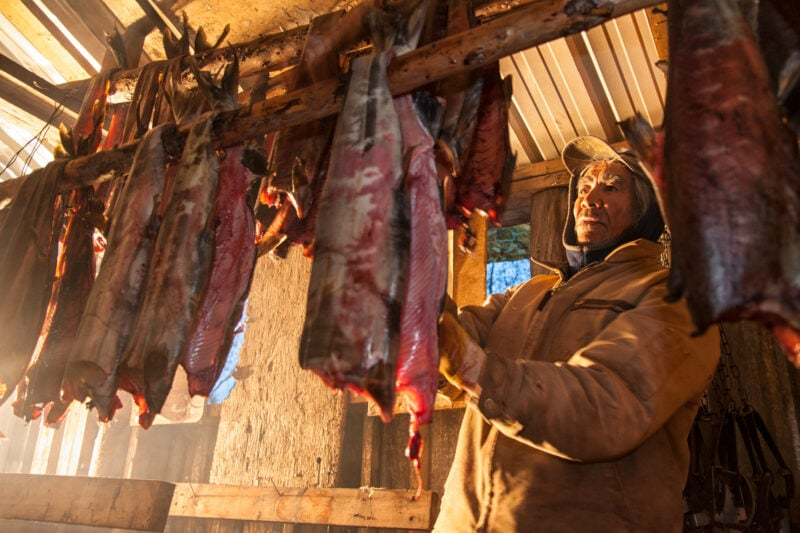James Itsi hangs chum salmon for smoking in a shed