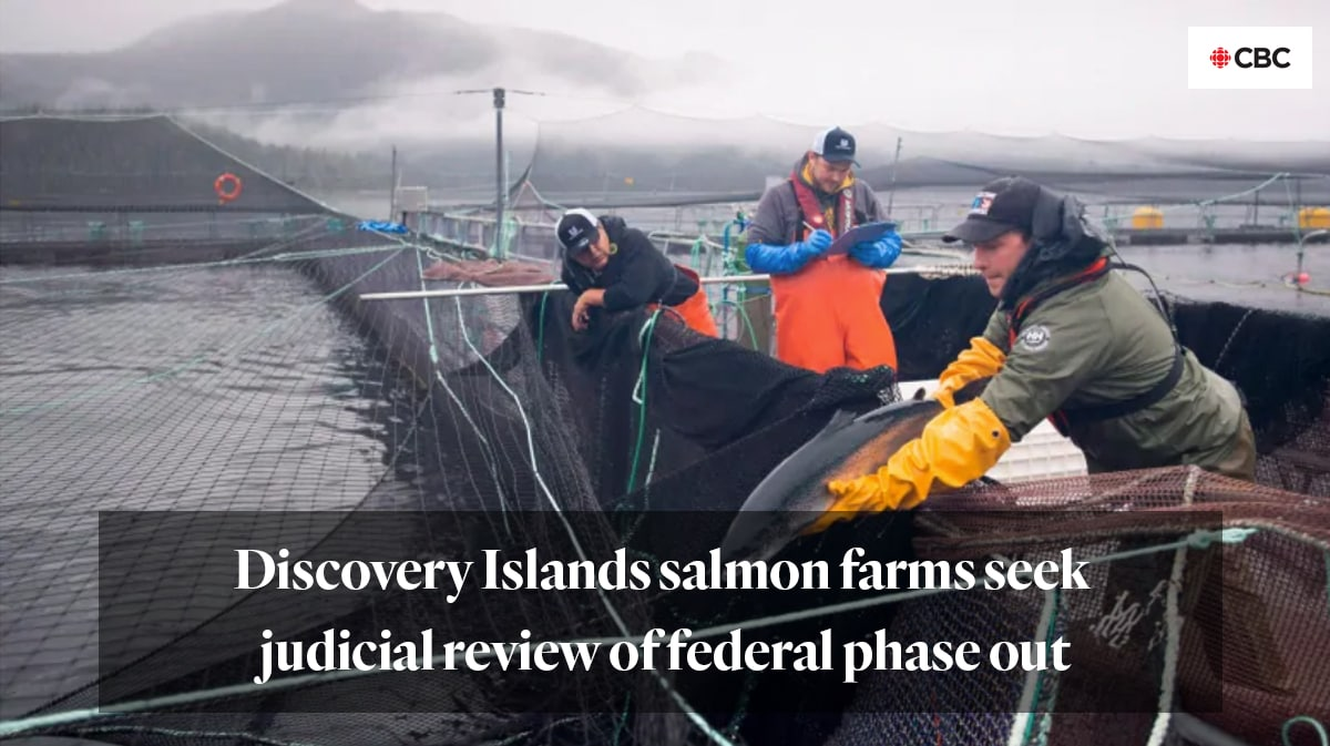 """Discovery Islands salmon farms seek judicial review of federal phase out"" from CBC"
