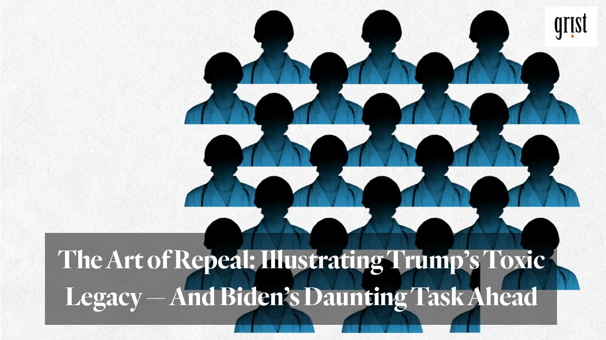 """The Art of Repeal: Illustrating Trump's toxic legacy — and Biden's daunting task ahead"" from Grist"