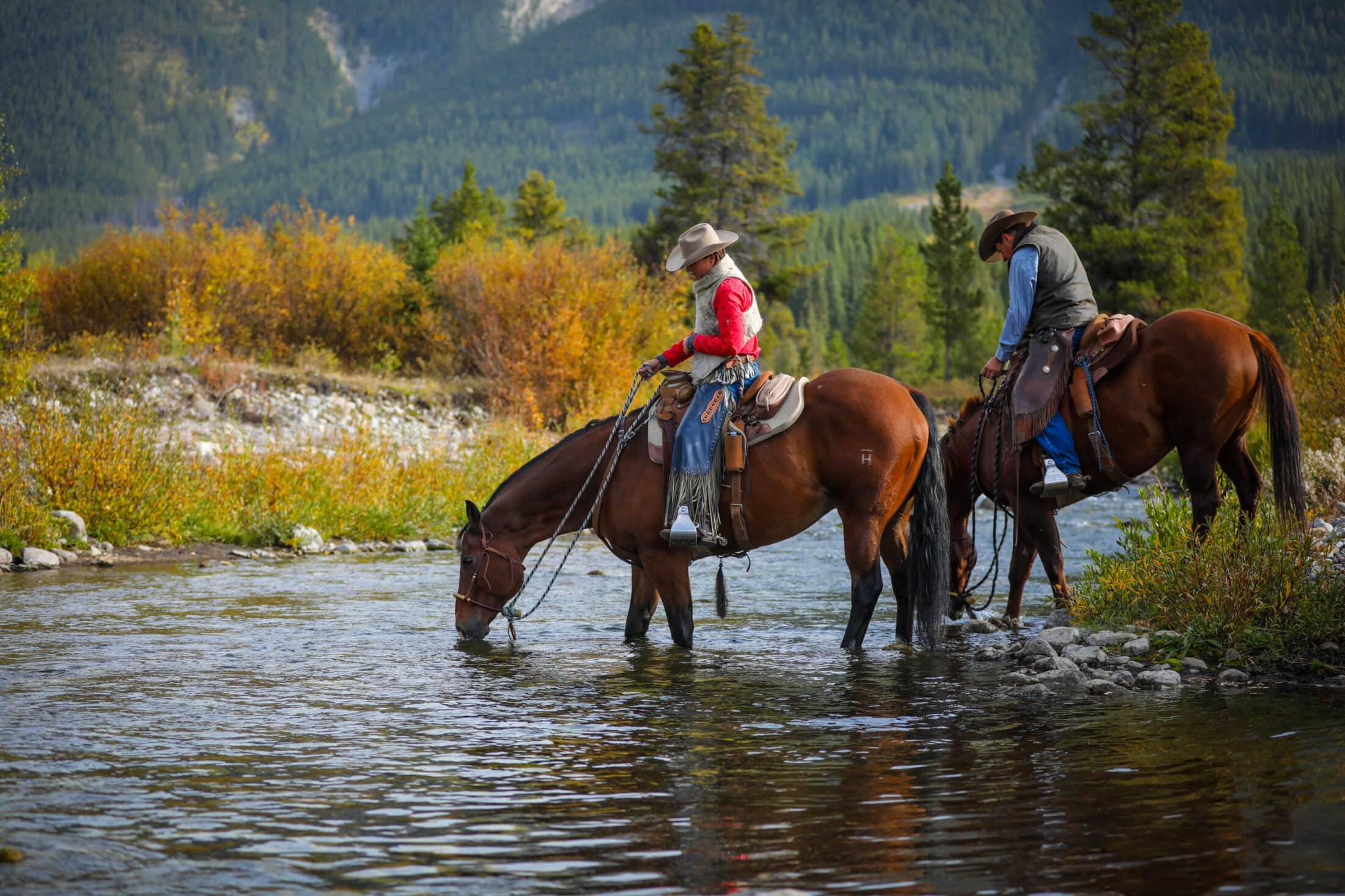 two ranchers on horses drinking from a stream