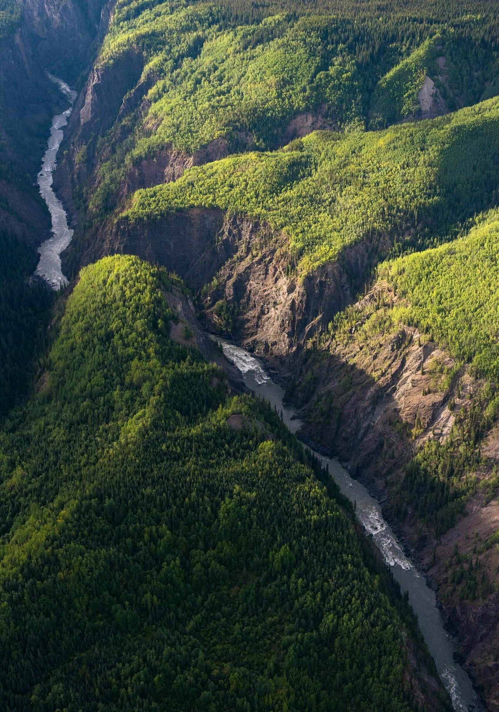 aerial view of Stikine River cutting through Grand Canyon