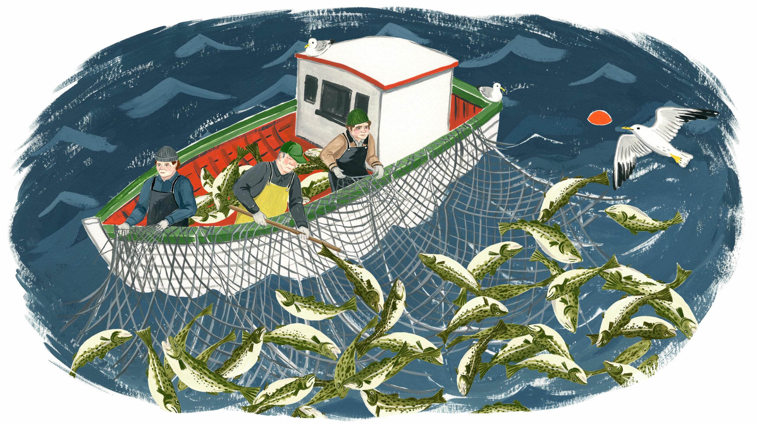 Cod fishing graphic