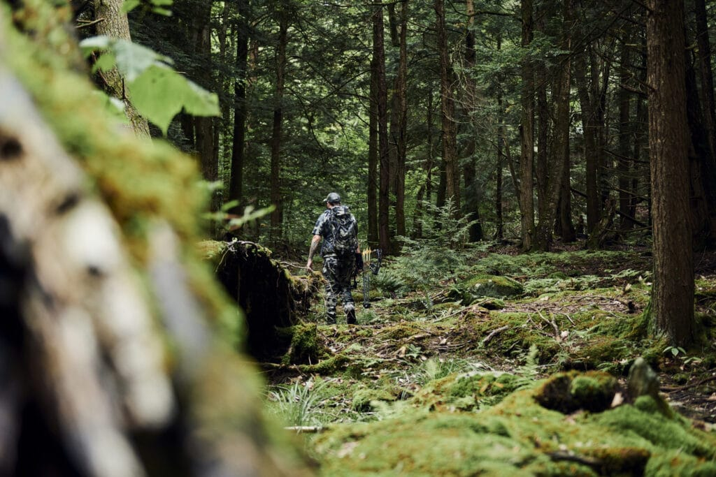 Hunting in forest