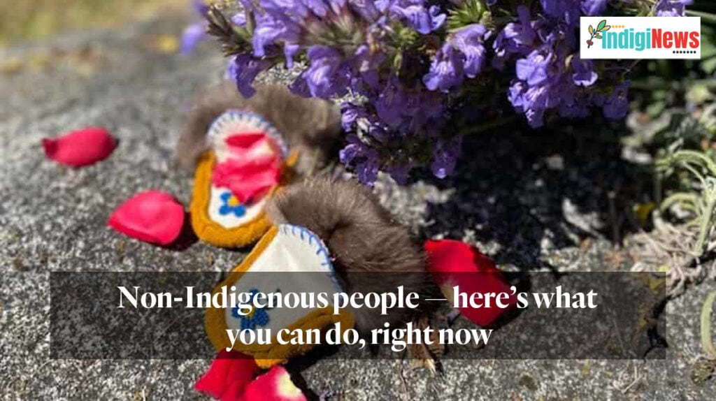Non-Indigenous people — here's what you can do, right now. Indiginews.