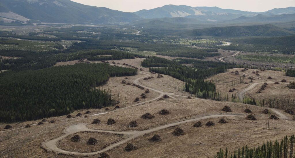 Alberta coal exploration eastern slopes Rocky Mountains
