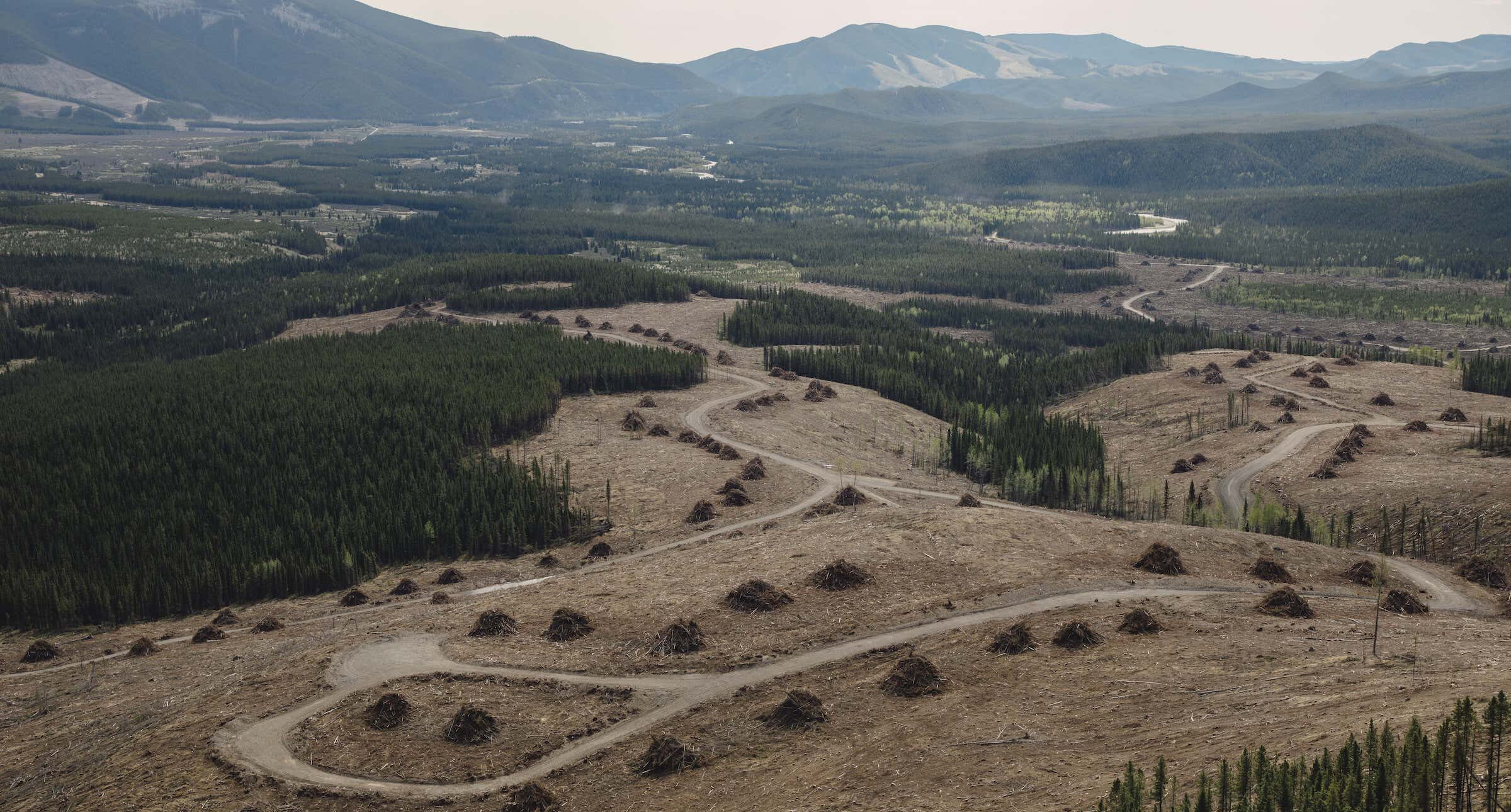Alberta-Rocky-Mountains-Coal-HelicopterTour017