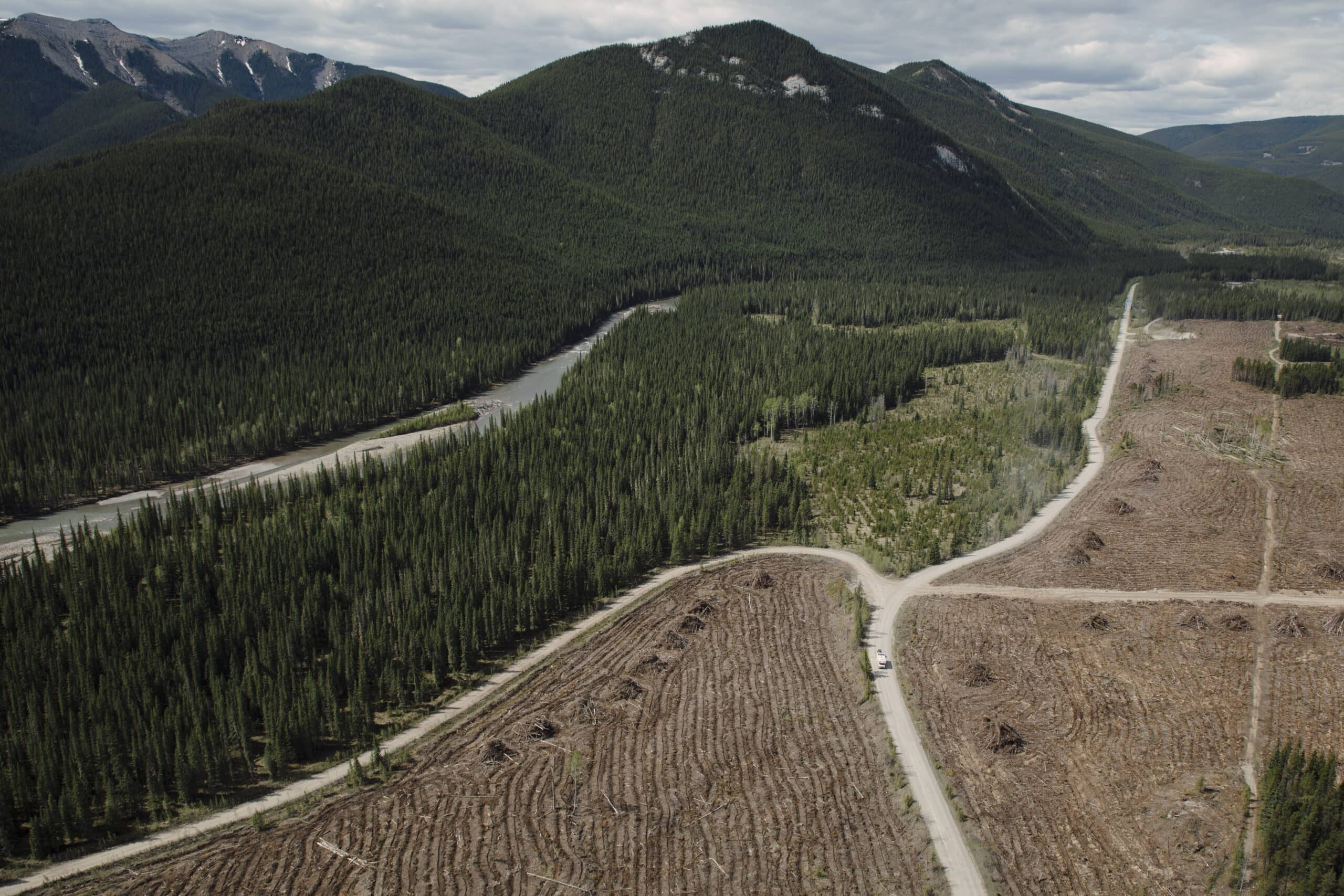 Clearwater River coal lease eastern slopes Rocky Mountains