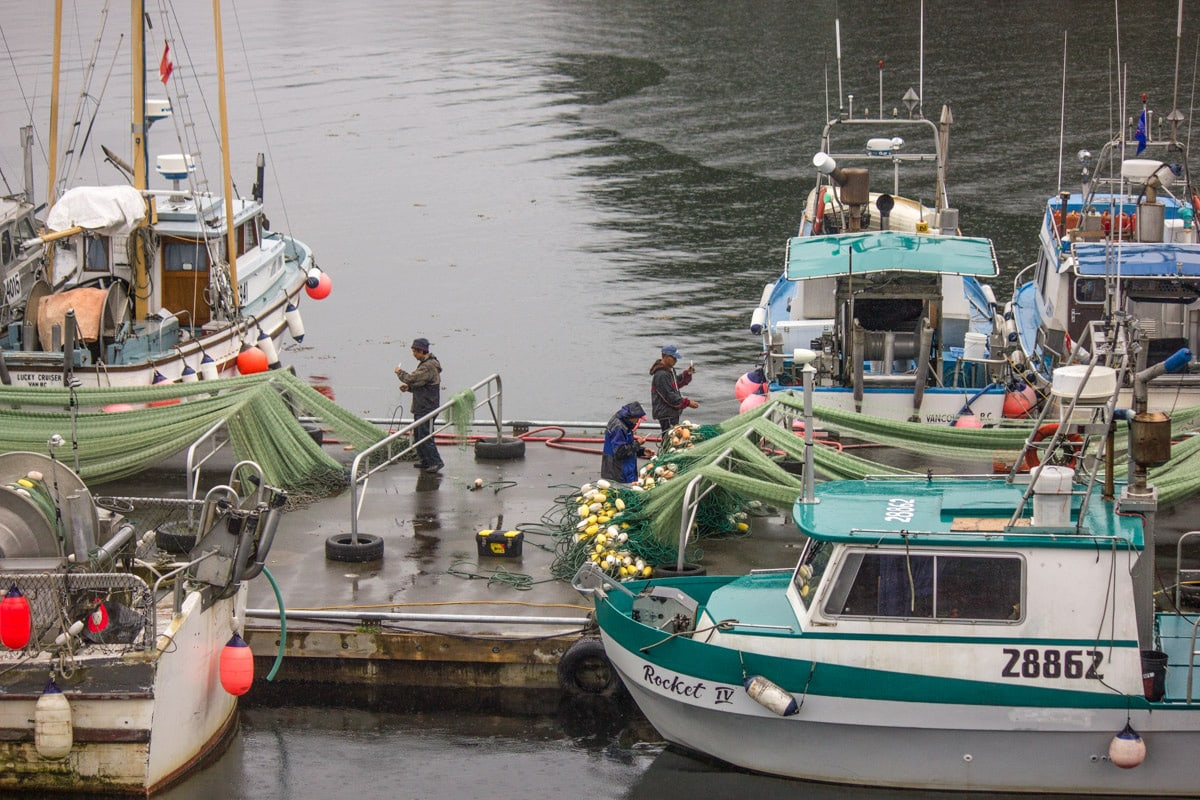 people standing on a dock near boats