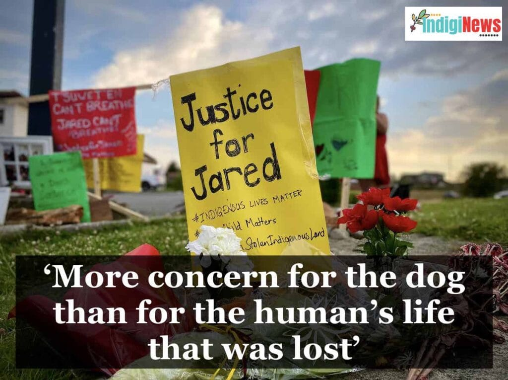 'More concern for the dog than for the human's life that was lost'