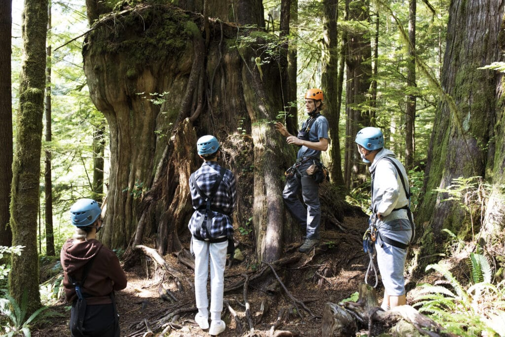 WestCoast WILD Zipline assistant manager Sandy Gulston (second right) shares local history during a forest walk with visitors