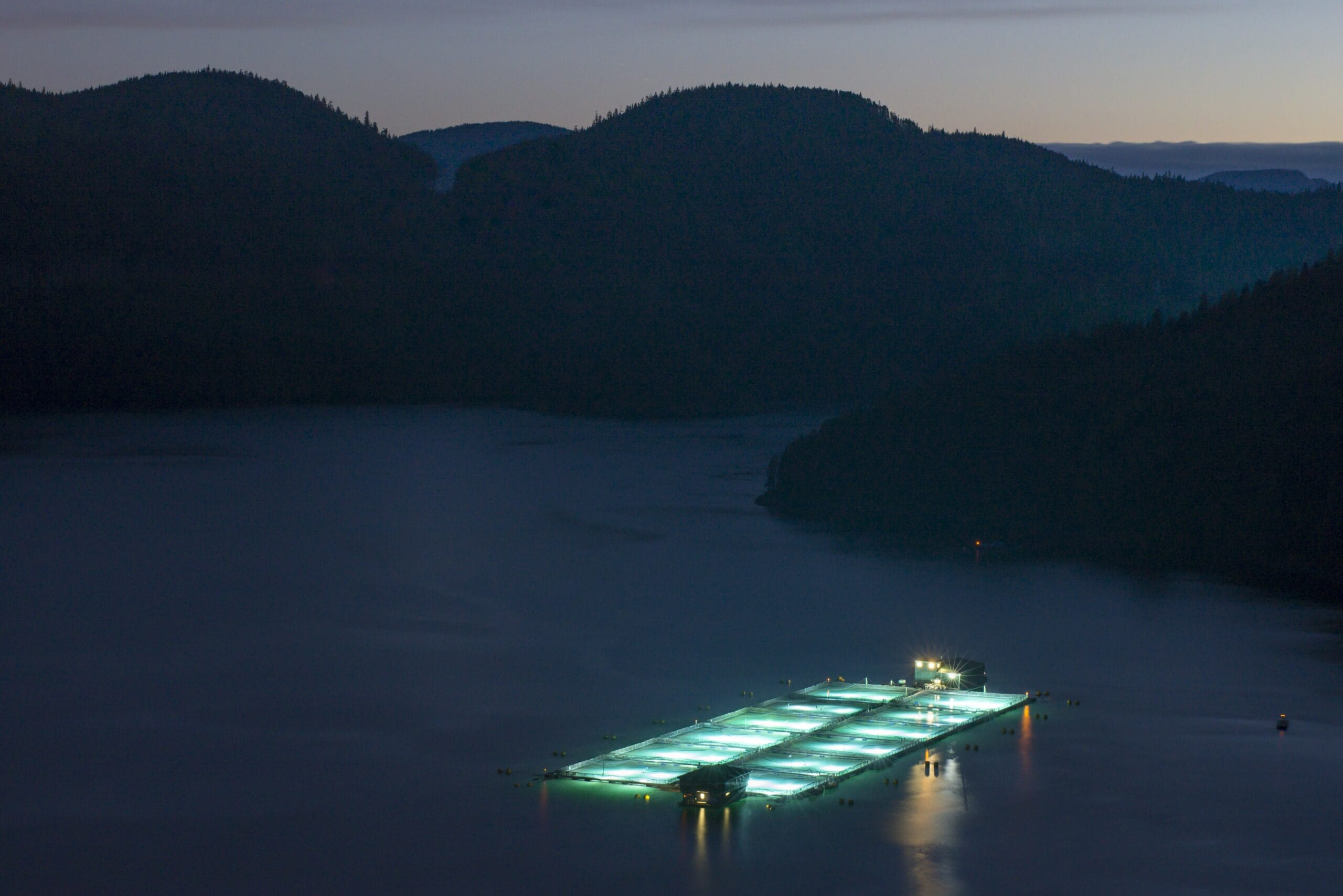 A BC fish farm seen from the air at night
