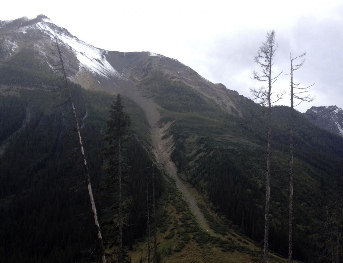 Farnham Glacier avalanche paths